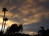 Atmospheric Observations (zoniedude1) Tags: light sunset summer arizona sky southwest color nature phoenix beauty weather skyline clouds skyscape evening colorful view desert sundown silhouettes palmtrees mybackyard sunsetsky backyardsunset skyshow azsky stormyskies monsoonseason valleyofthesun phoenixsky zoniedude1 monsoonsunset canonpowershotg12 pspx8 monsoon2016 atmosphericobservations
