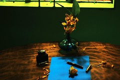I will write you a letter .... (Synthia Mazumder) Tags: blue flower green yellow pen ink table letter vase