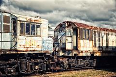 Expat (SJB Rail) Tags: english electric vintage rust diesel trains queensland railways qr ipswich railroads workshops 1651 1170