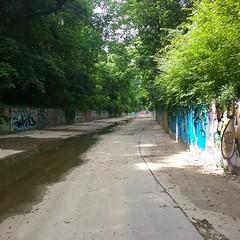 2016 graffiti (mcknightpercy) Tags: art graffiti photo oak paint flickr artist tag picture 666 tags scene spray artists graff hash channel 606 2016 513 859 stk hedake
