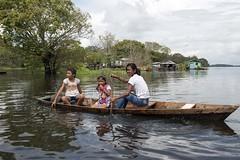 _TEF5692 (Edson Grandisoli. Natureza e mais...) Tags: rio menina madeira canoa remo amaznia remando ribeirinha regionorte jovemcabocla