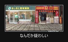 なんだか疑わしい #中華料理 #動物病院 #犬食い (Demochi.Net) Tags: life cute sexy japan fun japanese motivator culture 日本 ペット 猫 demotivator 金 家族 結婚 ゲイ 女 子供 おっぱい 愛犬 政治 社会 巨乳 文化 眼鏡 教育 demotivators 経済 女性 初恋 r18 女子 カップル 子猫 女装 お笑い motivators 会社 少子化 企業 ユーモア 恋 悪い 格差 風刺 一言 デモチ 大喜利