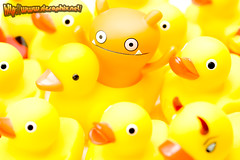 Ducky Boat? / UglyDoll x Ducky (gunshrimp) Tags: yellow ducky uglydoll duckie jeero wage