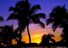 Coucher de soleil Saint Martin (Passionath Photographie) Tags: de soleil coucher