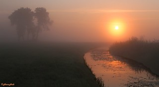 foggy sunrise (2)