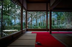 tea ceremony in the cold (Housen-in temple, Kyoto)