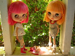 IMG_8481...Teeny Joi is sun bathing in a ray of sunlight.  The twins are happy she is being still for the moment. (Lindy Dolldreams) Tags: twins amor dove mango guava blythedoll realpuki