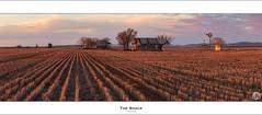 The Shack (John_Armytage) Tags: trees light sunset panorama windmill zeiss landscape 50mm dusk farm country australia panoramic nsw shack pineridge panp quirindi carlzeiss50mm johnarmytage canon5dmark111