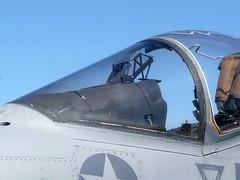 "McDonnell AV-8B Harrier II Plus(3) • <a style=""font-size:0.8em;"" href=""http://www.flickr.com/photos/81723459@N04/9995855144/"" target=""_blank"">View on Flickr</a>"