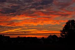 Golden sunrise (2) (tommaync) Tags: morning sky orange sun oneaday clouds sunrise dawn nc nikon october northcarolina photoaday pictureaday chathamcounty d40 digitalcameraclub project365 2013 project365271 gününeniyisithebestofday project365100313