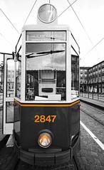 Circolare Piazza Castello (Ste Cube) Tags: colour torino tram turin piazzacastello stecube
