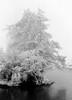 winter in holland (4) (bertknot) Tags: winter winterinholland