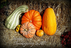 A Blessed Thanksgiving To All! (Puzzler4879) Tags: thanksgiving holidays pointshoot canonpowershot happythanksgiving canondigital canonaseries holidaygreetings canonphotography holidaywishes canonpointshoot a580 canona580 canonpowershota580 powershota580