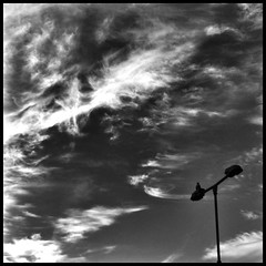 City. (XReg) Tags: pictures city blackandwhite bw holland bird art netherlands dutch clouds noir artistic awesome lookingup lamppost squareformat photoaday netherland dailyphotos blacknwhite photoart addict bnw cloudporn photowall stylish picoftheday bestshot dailyview blackndwhite picart photoaddict dailybasis iphoneography igers iphoneonly primeshots iphone4s iphonesia picdaily instanoir