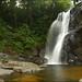 Doowilli Ella @ Sinharaja Forest Reserve.