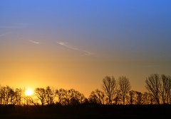 This morning- a bit cold but lovely! (Tobi_2008) Tags: trees sky color silhouette alberi sunrise germany deutschland saxony himmel ciel arbres sachsen tobi farbe bume sonnenaufgang allemagne germania