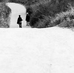 Willow canyon trail (SungsooLee.com) Tags: california street people blackandwhite bw film america blackwhite unitedstates delta 100mm hasselblad trail 100 delta100 ilford cf lagunabeach f35 503cw mydays