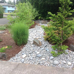 """Beautiful Dry Creek Bed by Greenhaven Landscapes <a style=""""margin-left:10px; font-size:0.8em;"""" href=""""http://www.flickr.com/photos/117326093@N05/12824371795/"""" target=""""_blank"""">@flickr</a>"""