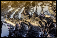 los lagartos al sol (juan luis olaeta) Tags: photoshop canon landscape atardecer agua natura bizkaia euskalherria playas paisvasco topaz barrika urak sigma1020 paisages tonalcontrast