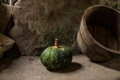 IMG_5510 (xijian_photo) Tags: life wood food green fruit vintage pumpkin still healthy log eating timber traditional chinese fresh pear grape