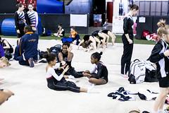 088-IMG_4084 (PSmith Photos) Tags: colefieldhouse 2014fairlandclassic boysandgirlstrampolineandtumbling