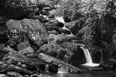 (bamboolizer) Tags: bw nature monochrome nikon taiwan brook cascade d800 bwcpl bwnd64 newtaipeicity 70200mmf4vr