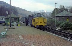 37111 1B07+37112 1T16 Ardlui 31st March 1982 (Mr Bushy) Tags: tractor scotland highlands 1982 br lochlomond britishrail ee scr growler syphon ardlui englishelectric westernhighlands westhighlandline argyllbute steamheat class37 brblue largelogo railblue eetype3 scottishregion table227