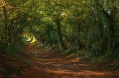 Дорога в Халнакер, Великобритания