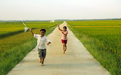 IMG_8035 (thanks.binh) Tags: autumn people green childhood children rice vietnam lethuy