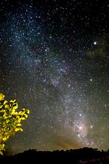 DSC_5105-1 (claudioserfaty) Tags: nightphotography stars nightshot astrophotography nightsky milkyway brasilemimagens stairysky