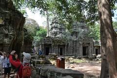 塔普倫廟 (mawingchung,,,) Tags: park sky macro tree tower nikon 公園 柬埔寨 微距 廟宇 暹粒 d800e
