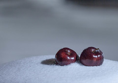 Fresh Apples (Mido Melebari) Tags: old blue trees winter shadow white snow black building tree history ice apple yellow night canon university snowy branches guelph hard creative 5d chilly snowing nightlife emergency cols