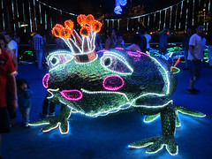 Frog prince (beeffaucet) Tags: christmas lights colombia medellin