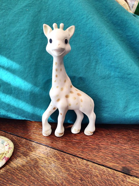 This sweet little giraffe is going to live with Cricket