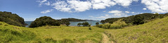 bay of islands (matt_in_a_field) Tags: ocean new green canon landscape island eos islands scenery view angle path wide scenic panoramic zealand nz 5d dslr 1635 mk3