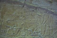 Egitto, Luxor le tombe dei nobili 138 (fabrizio.vanzini) Tags: luxor egitto 2015 letombedeinobili