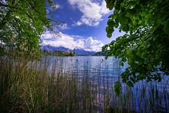 Lake Bled with Church - Slovenija (R.Smrekar-CH) Tags: lake church landscape spring d750 bled slovenija 000000 smrekar