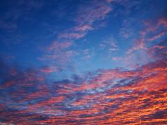 DSC03517 (vercyngetoriks) Tags: poland polska 2015 chmury niebo wschdsoca szczecinek wojewdztwozachodniopomorskie neustettin kreisneustettin 20151207 powiatszczecinecki grudzie2015