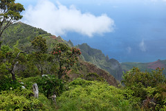 Napali Coast Lookout (bruzasd) Tags: hawaii coast kauai napali 2016