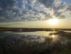 Cloud reflections (tom_2014) Tags: travel sky cloud reflection water clouds sunrise river landscape dawn asia view wetlands serene chu centralasia kazakhstan effect kazakh steppe wetland kazak tugai churiver