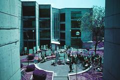 UAM-X 2/5 (The Daniel Garca) Tags: film lomo lomography purple phototgraphy lomochrome