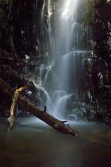 Westfield_20160529_001a (EHPett) Tags: longexposure forest waterfall outdoor connecticut middletown westfieldfalls