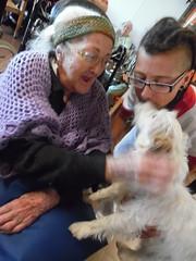 Saliceto_ Progetto ComuniCane (Asp Bologna) Tags: pet cane anziani progetto adolescenti saliceto
