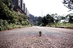 (Kumiko) Tags: japan ruins pentax  dambo