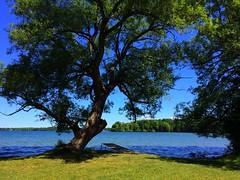 Ontario Parks (CCphotoworks) Tags: joylandbeach mcraeprovincialpark provincialparks landscape outdoors nature ontarioparks scenics ccphotoworks