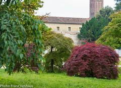 160529_Padova_Padua-752234.jpg (FranzVenhaus) Tags: trees italy history restaurant towers churches cathedrals it walls padova padua veneto oldtowns