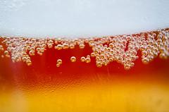 Beer!! (Javier Palacios Prieto) Tags: macro beer cerveza hell bubbles pilsen rubia bier cerveja pils birra plzen schaum espuma blinde