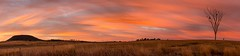 Painted Sky Dawn - Freestone - Queensland - Australia (andrew.walker28) Tags: red yellow dawn panorama sunrise queensland australia painted farm light soft color colour