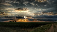 Walking the dog in the late afternoon (Oliver Kuehne) Tags: anton steinheim bayern bavaria germany lgg5 clouds farmland dusk sun nature