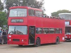 British Bus Co 46887Y1 v3 (megabus13601) Tags: california greyhound bus company western british alexander aylesbury luton leyland santee olympian f633lmj 46887y1